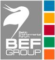 www.befgroup.net